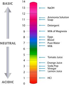 341259_Bio-02-17-pH_Scale.png