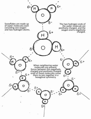 Crystal structure of snowflakes formed from hydrogen bonds between the water molecules
